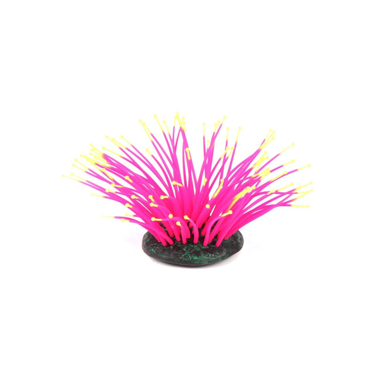 Aquatlantis Aqua Glow Anemone, Bild 2