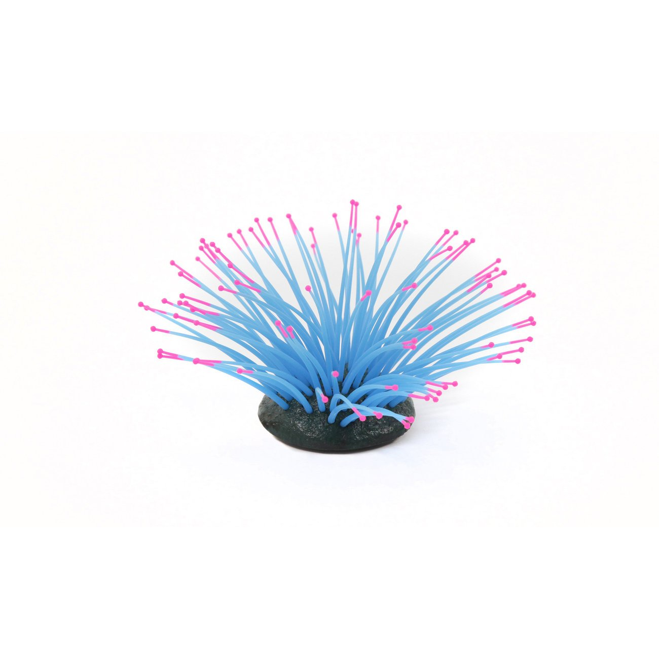 Aquatlantis Aqua Glow Anemone, Bild 3