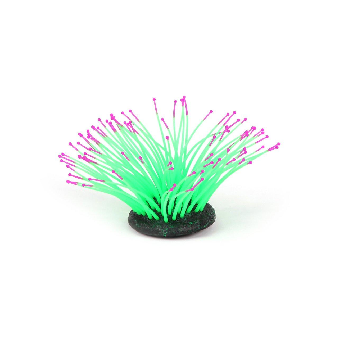 Aquatlantis Aqua Glow Anemone, Bild 7
