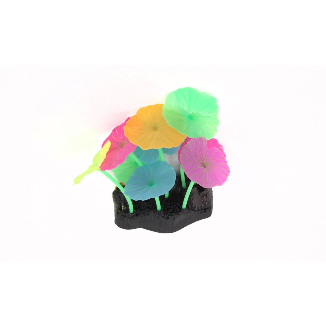 Aquatlantis Aqua Glow Lotus, Bild 3
