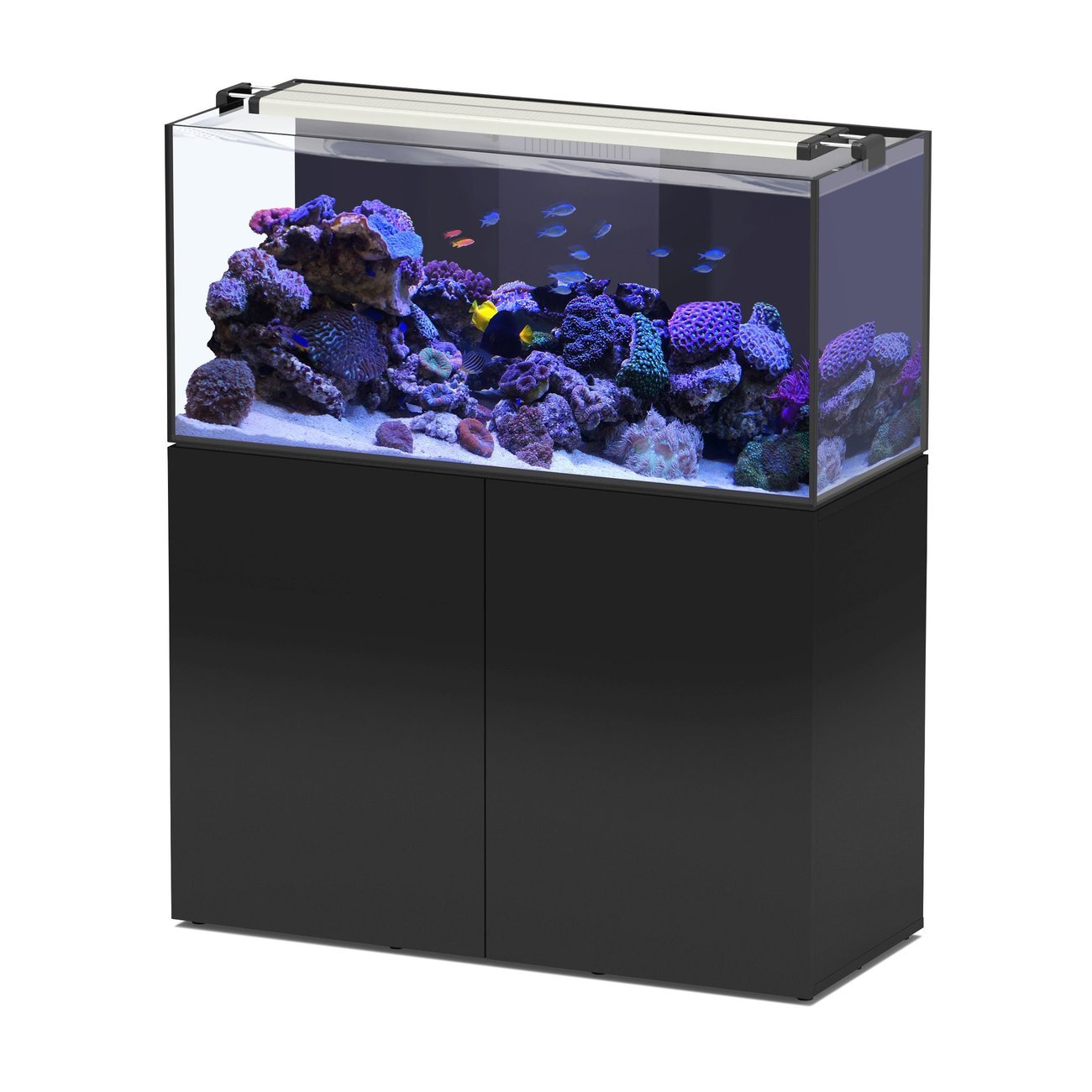 Aquatlantis AquaView 120 mit Unterschrank, Bild 3
