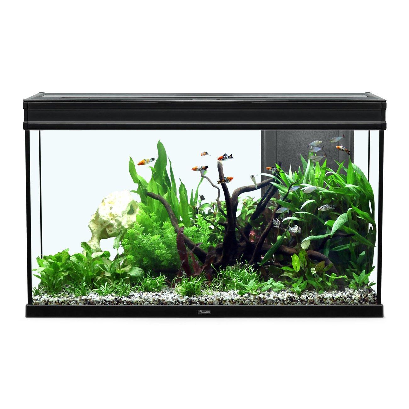 Aquatlantis Elegance Expert 100 Aquarium