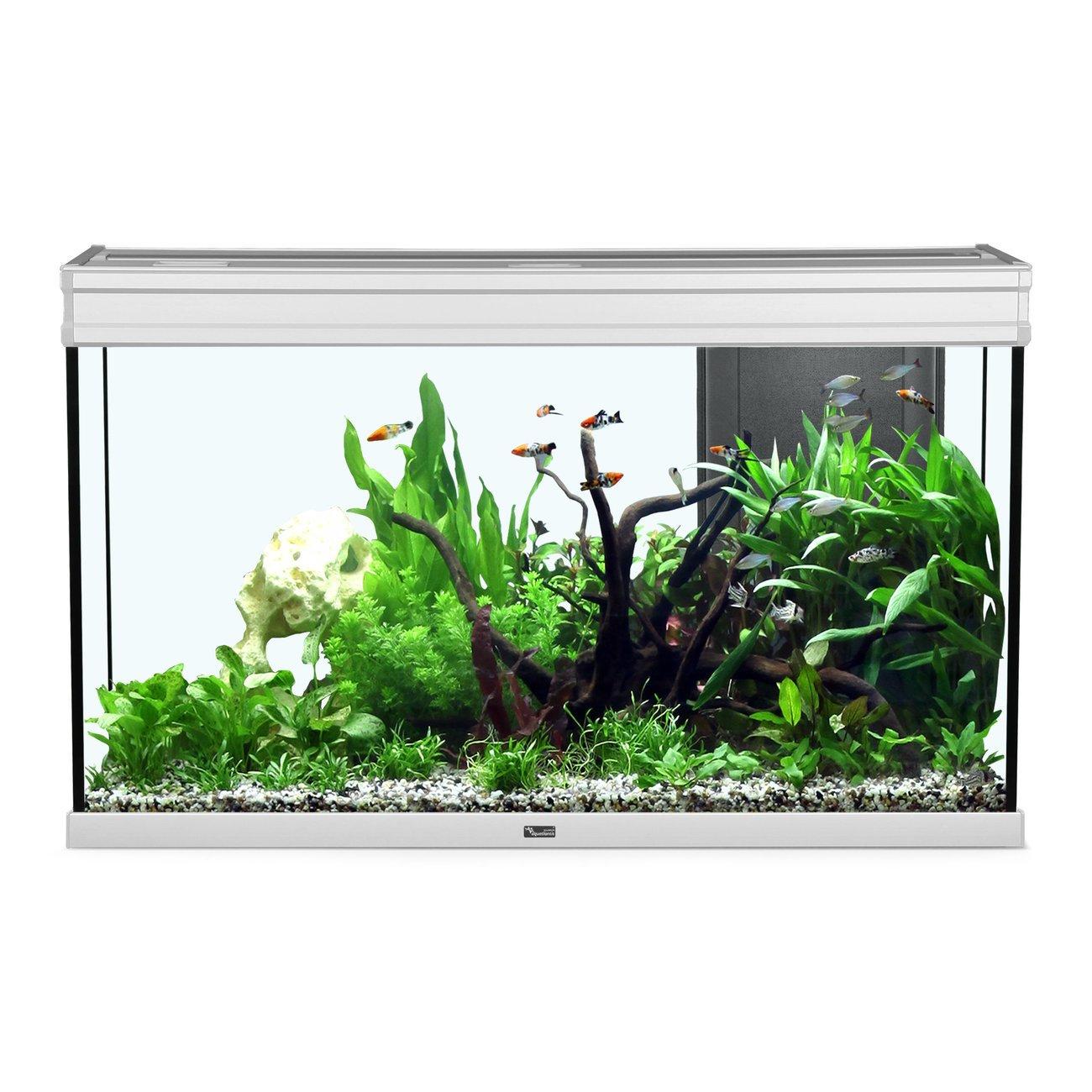 Aquatlantis Elegance Expert 100 Aquarium, Bild 2