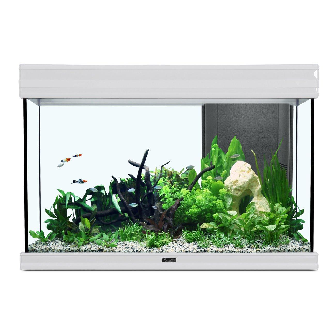 Aquatlantis Fusion 80 Aquarium, 80x40x55cm, 176L/137L, weiß