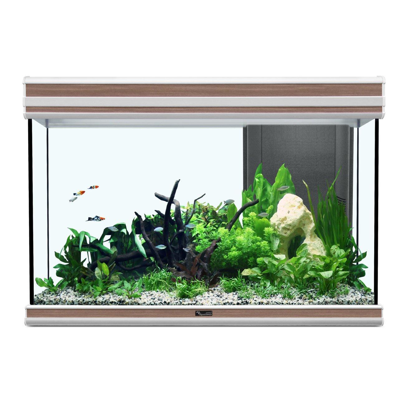Aquatlantis Fusion 80 Aquarium, 80x40x55cm, 176L/137L, braun