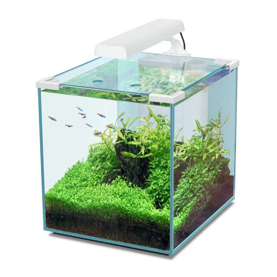 Aquatlantis Nano Cubic Aquarium, Bild 3