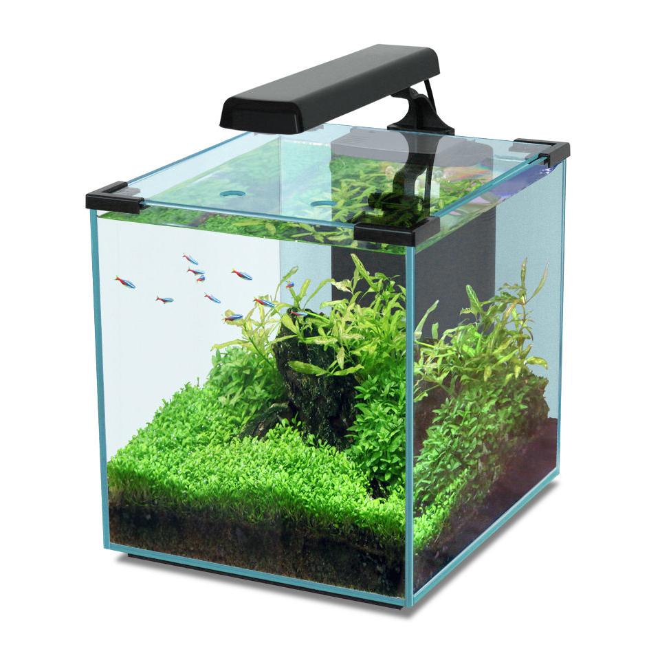 Aquatlantis Nano Cubic Aquarium, Bild 5