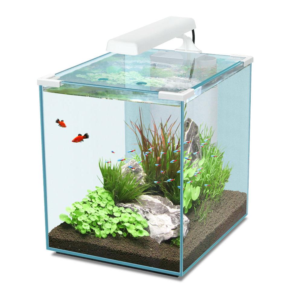 Aquatlantis Nano Cubic Aquarium, Bild 6