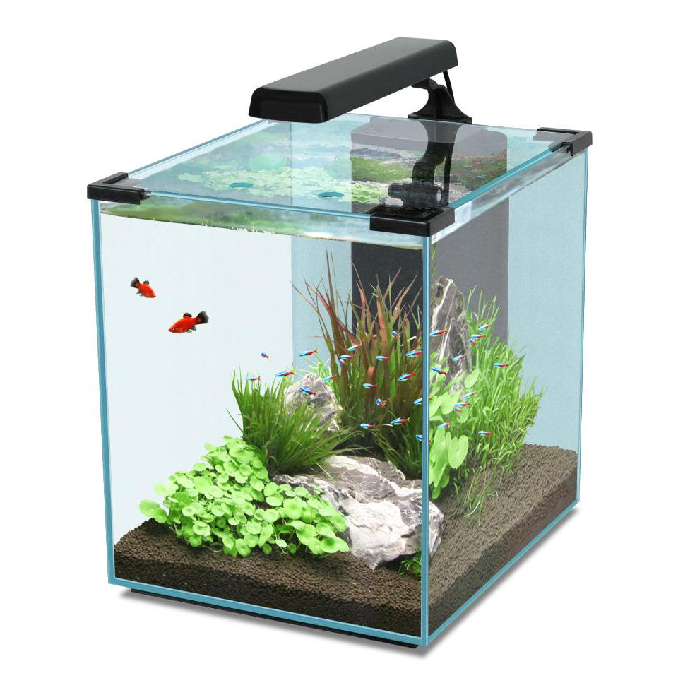 Aquatlantis Nano Cubic Aquarium, Bild 4