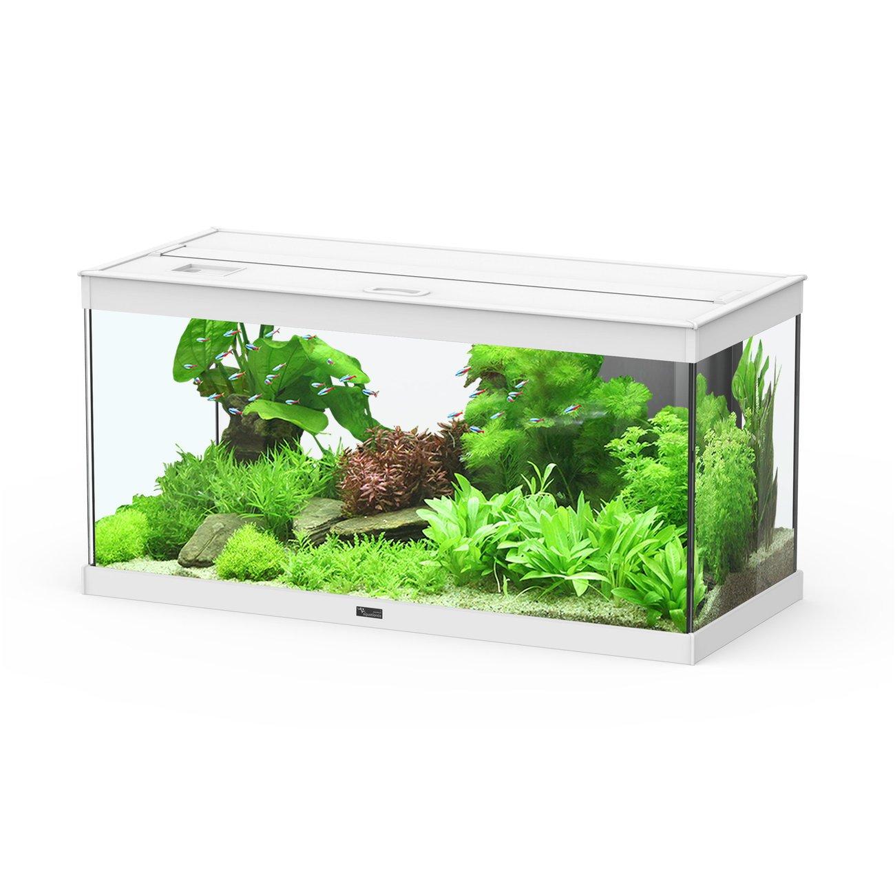 Aquatlantis Style LED Aquarium, 80, weiß