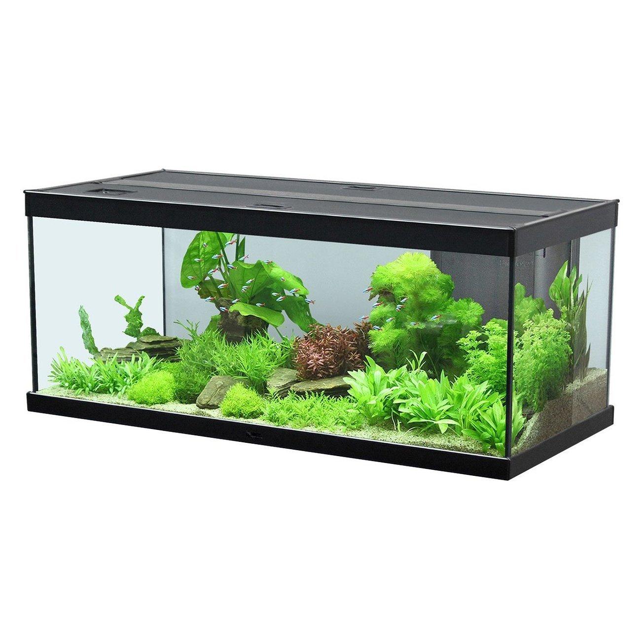 Aquatlantis Style LED Aquarium, 100, schwarz