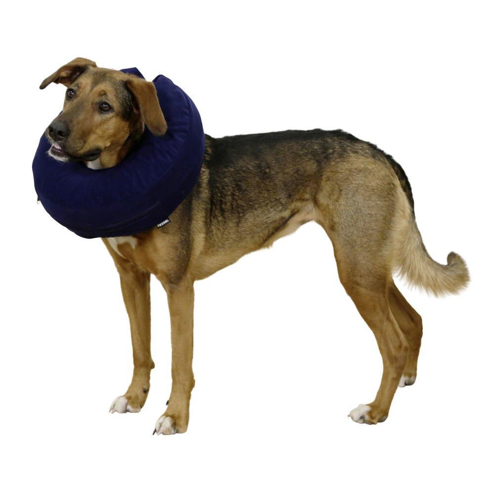 Kerbl Aufblasbare Hunde Halskrause, Bild 4