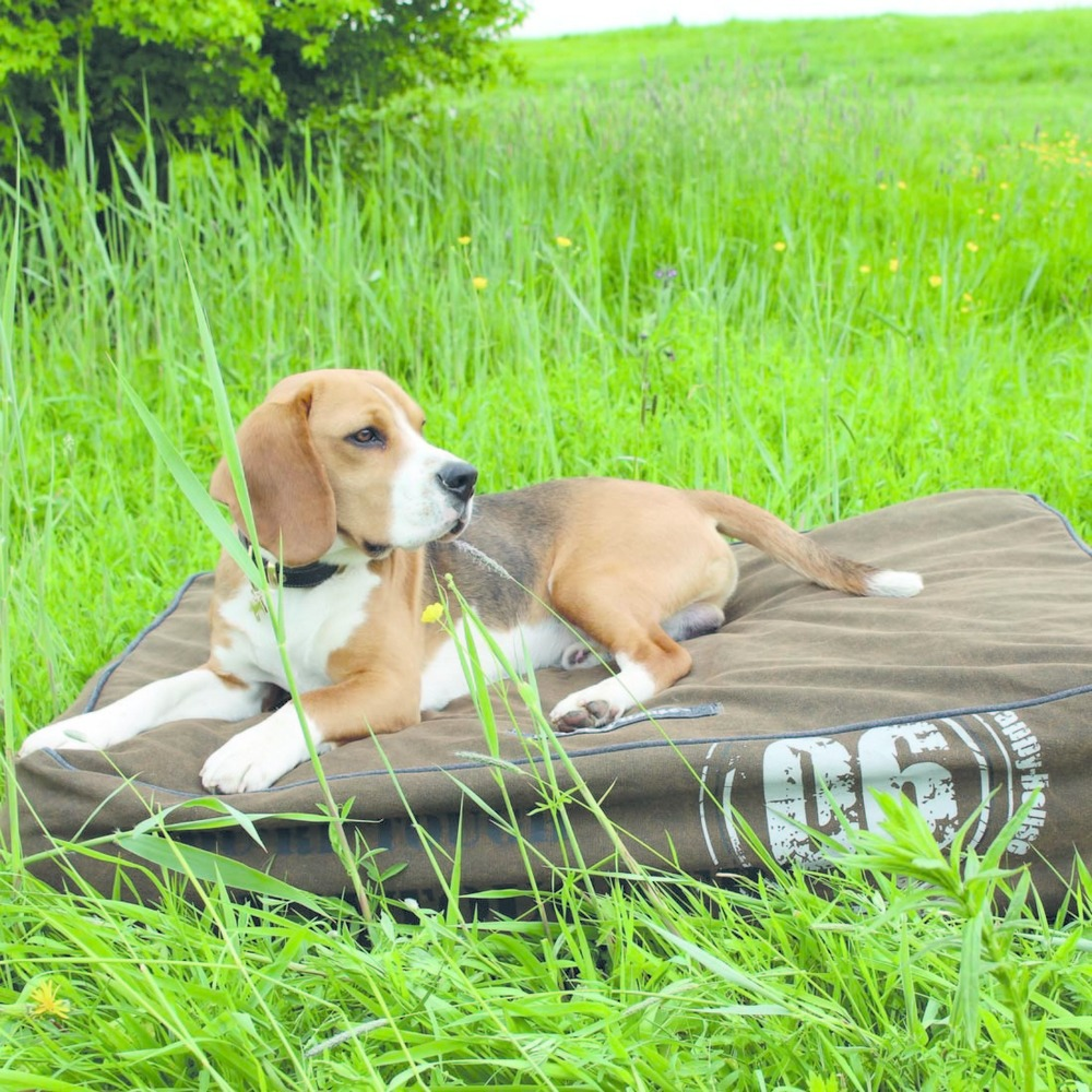 Happy House Aufblasbares Hundekissen Tough, Bild 5