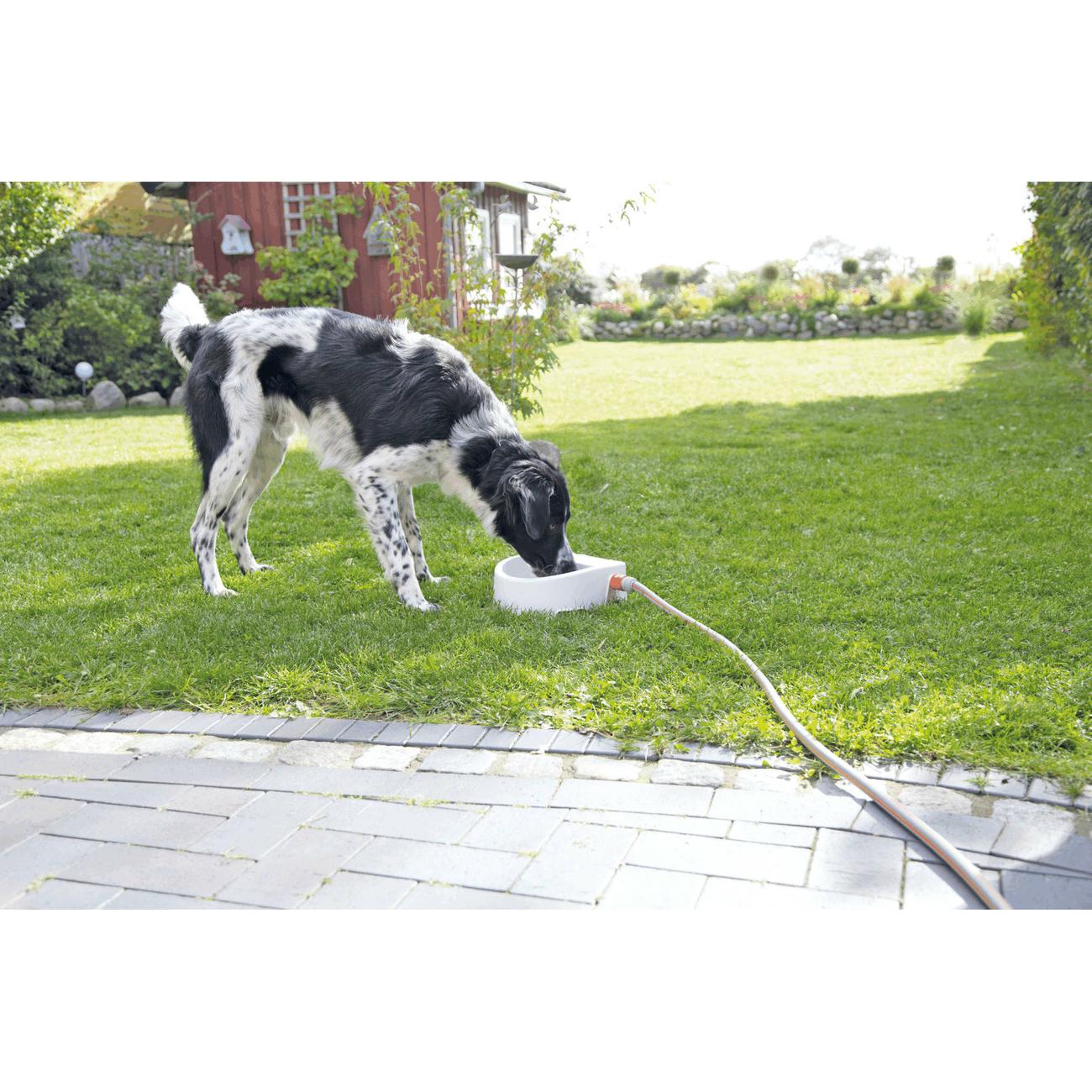 Trixie Automatische Outdoor-Tränke für Haustiere 24395, Bild 4