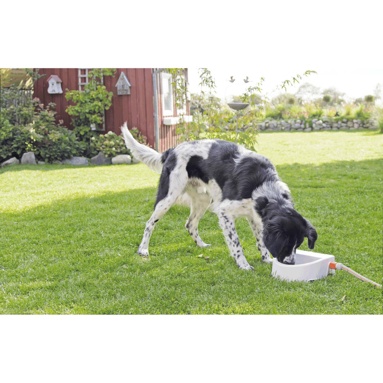 Trixie Automatische Outdoor-Tränke für Haustiere 24395, Bild 5