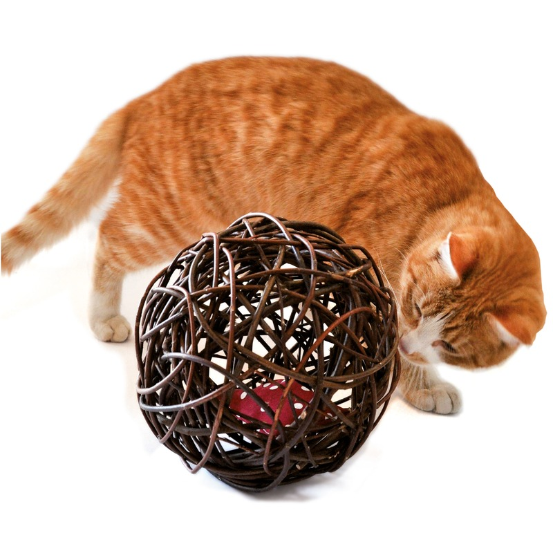 Aumüller Baldi Ball Katzenball, Bild 2