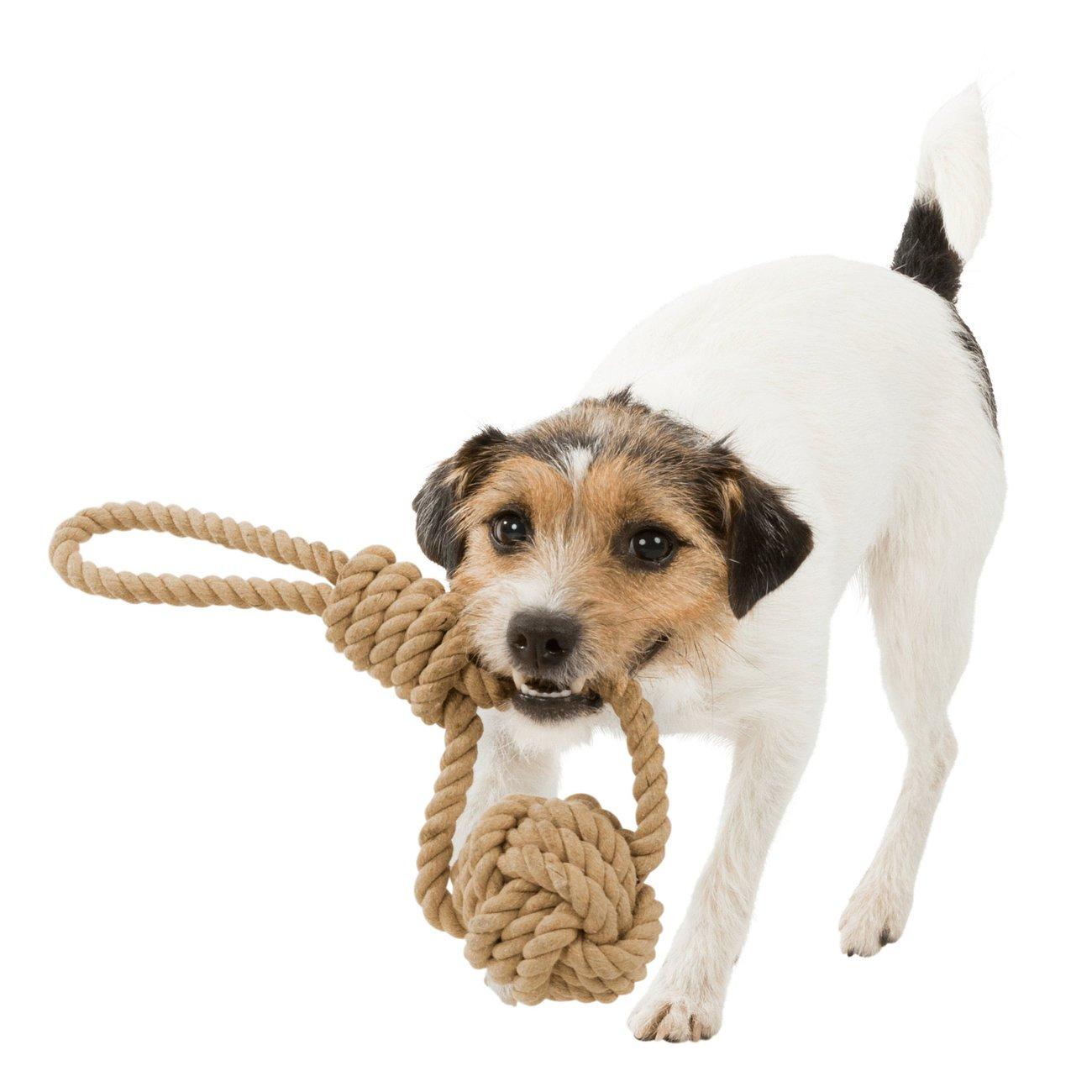 TRIXIE BE NORDIC Hunde Spieltau mit eingeflochtenem Ball 32632, Bild 2