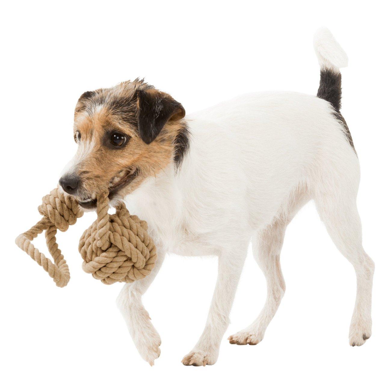TRIXIE BE NORDIC Hunde Spieltau mit eingeflochtenem Ball 32632, Bild 3