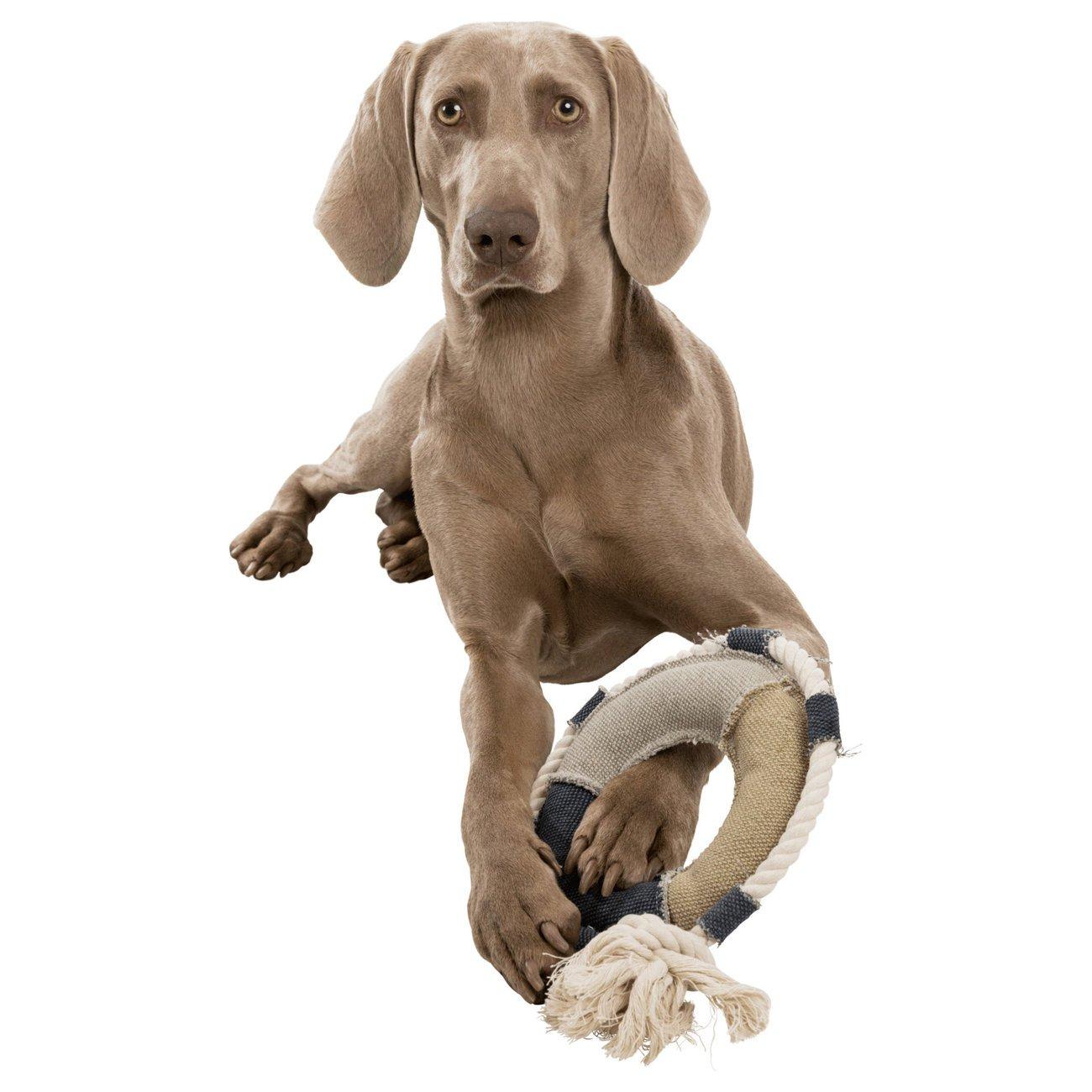 Trixie BE NORDIC Rettungsring, Hundespielzeug 35652, Bild 4