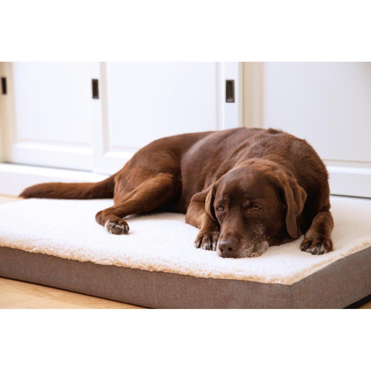 Beeztees Memoryfoam Liegekissen Zira für Hunde, Bild 2
