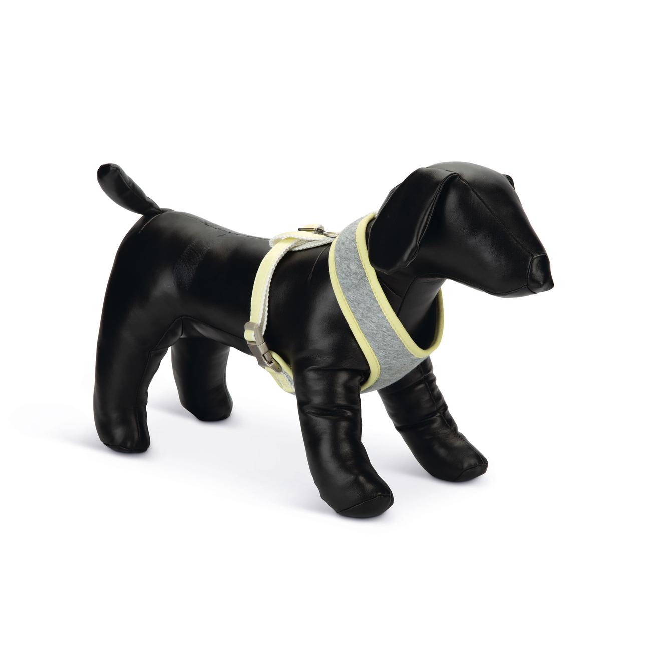 Beeztees Puppy Hundegeschirr für Welpen, Bild 2