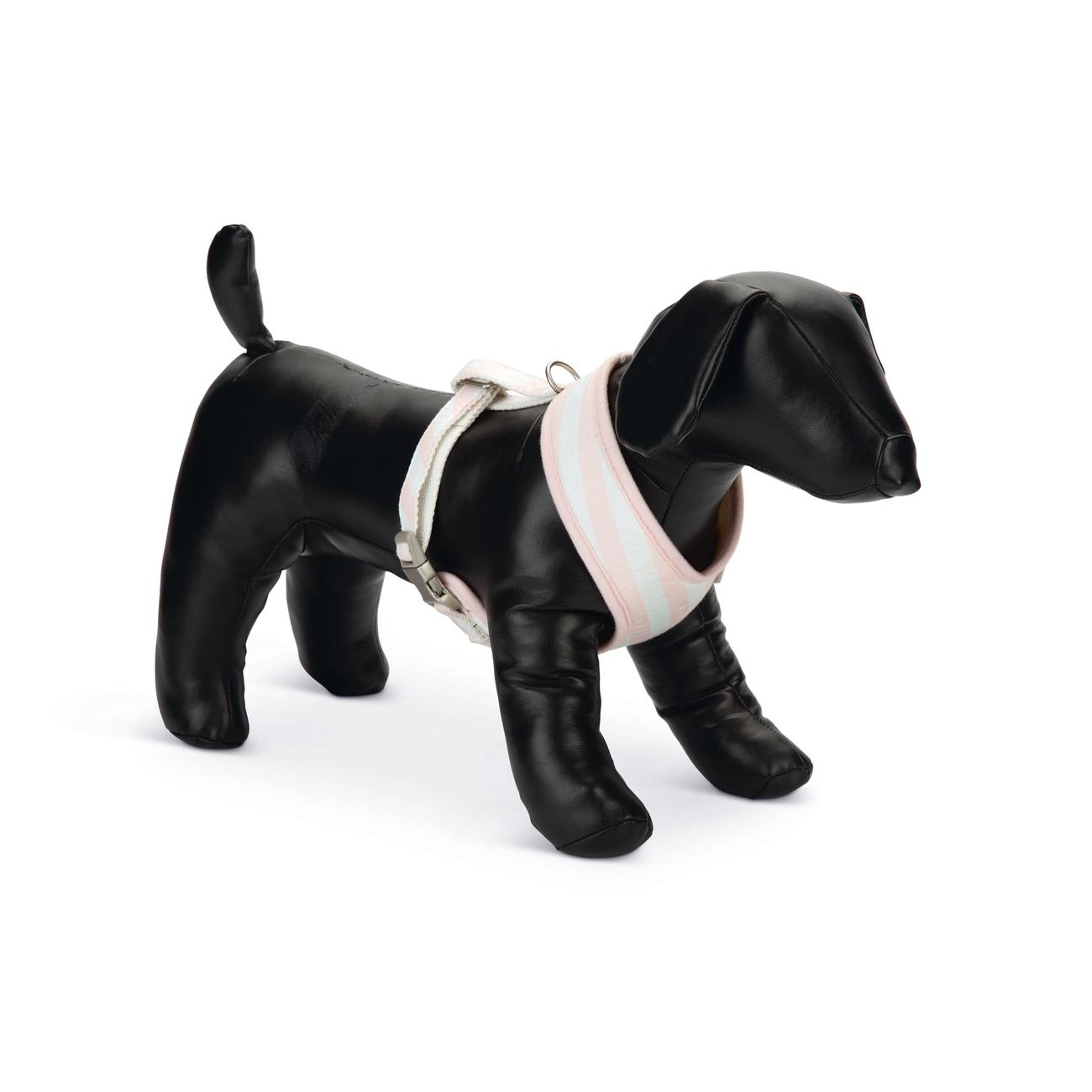 Beeztees Puppy Hundegeschirr für Welpen, Bild 4
