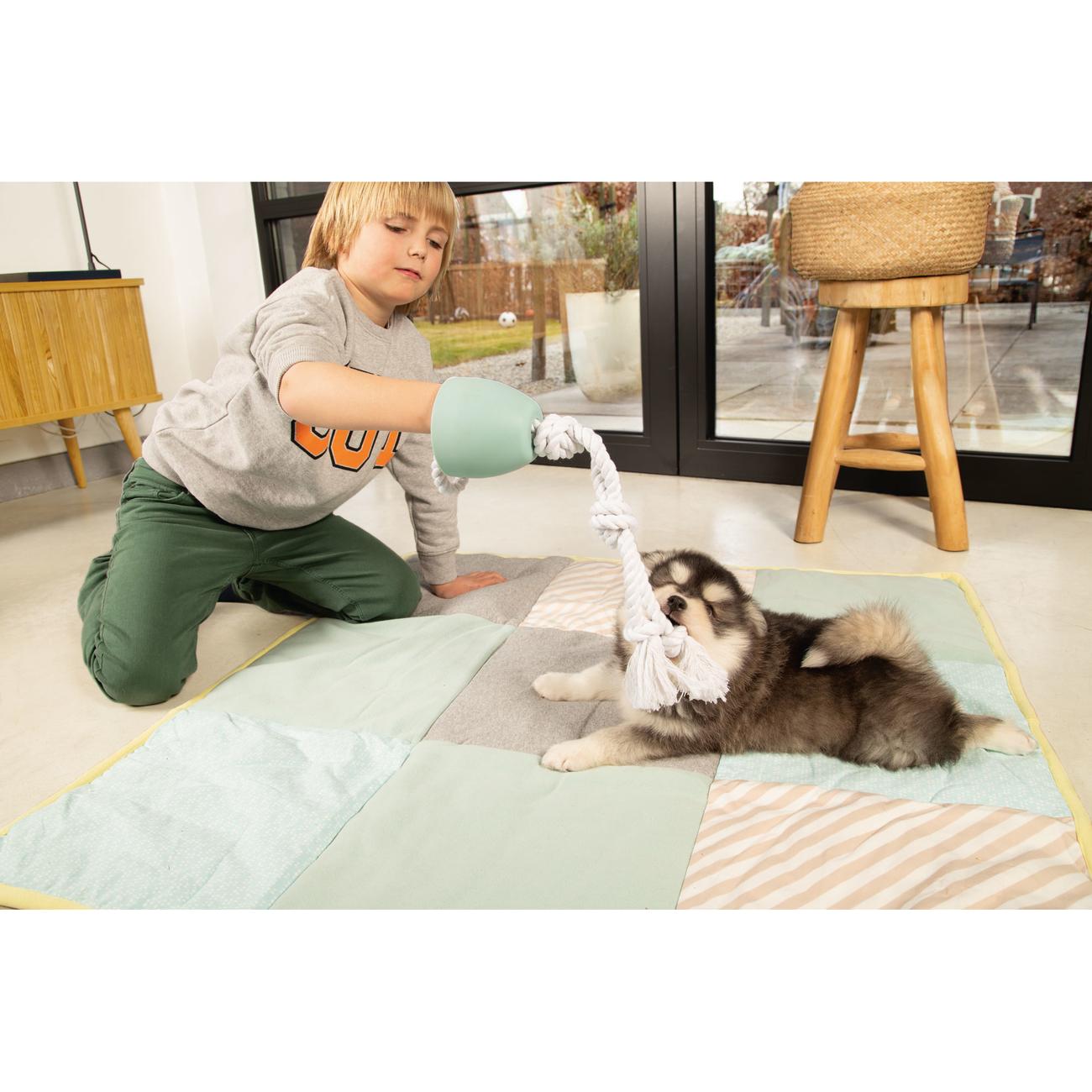Beeztees Puppy Quilty Plaid Welpendecke, Bild 4