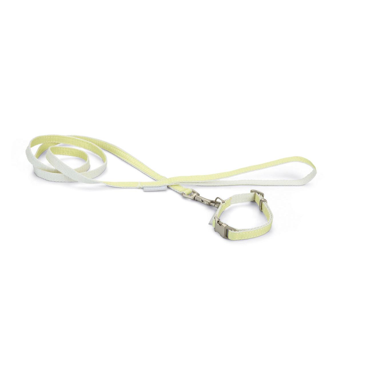 Beeztees Puppy Welpen Set Halsband Leine, Bild 4