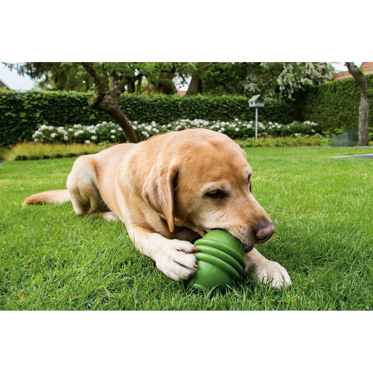 Beeztees Sumo Play Hundespielzeug, Bild 2