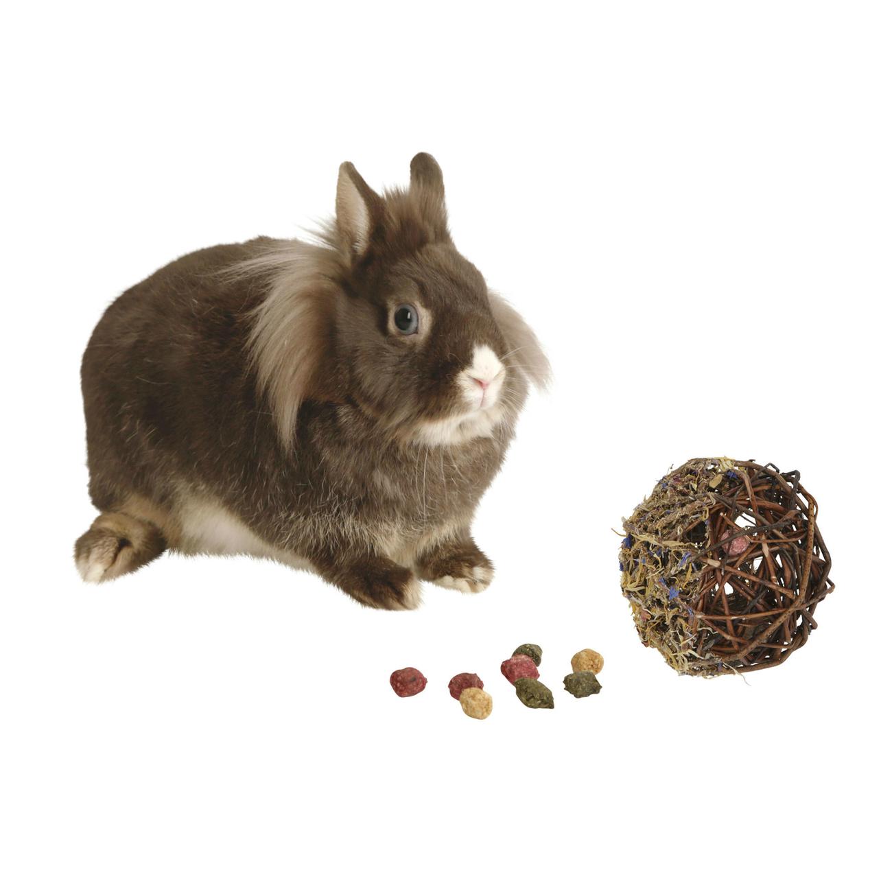 Kerbl Befüllter Weidenball für Kleintiere, Bild 2