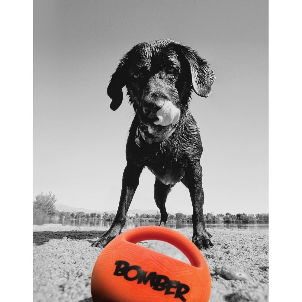 Bomber Durafoam Hundespielzeug, Bild 4