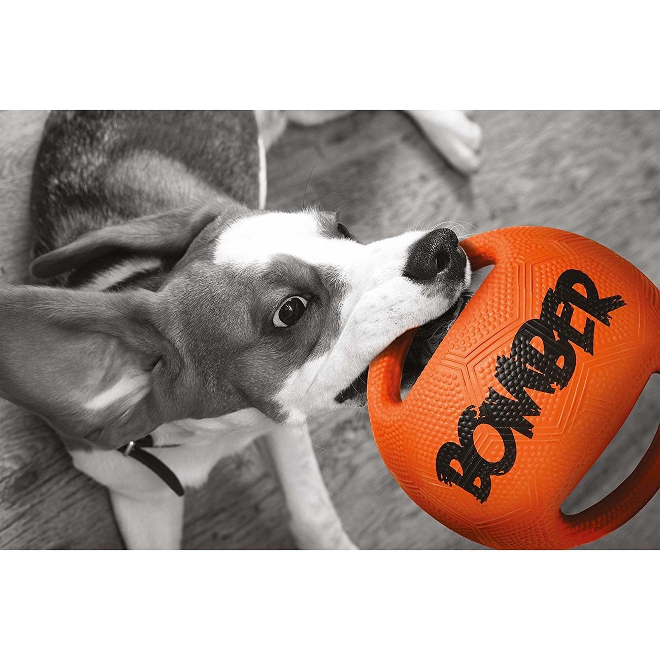 Bomber Hundespielzeug, Bild 5