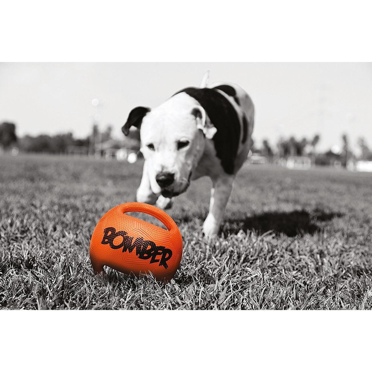 Bomber Hundespielzeug, Bild 6