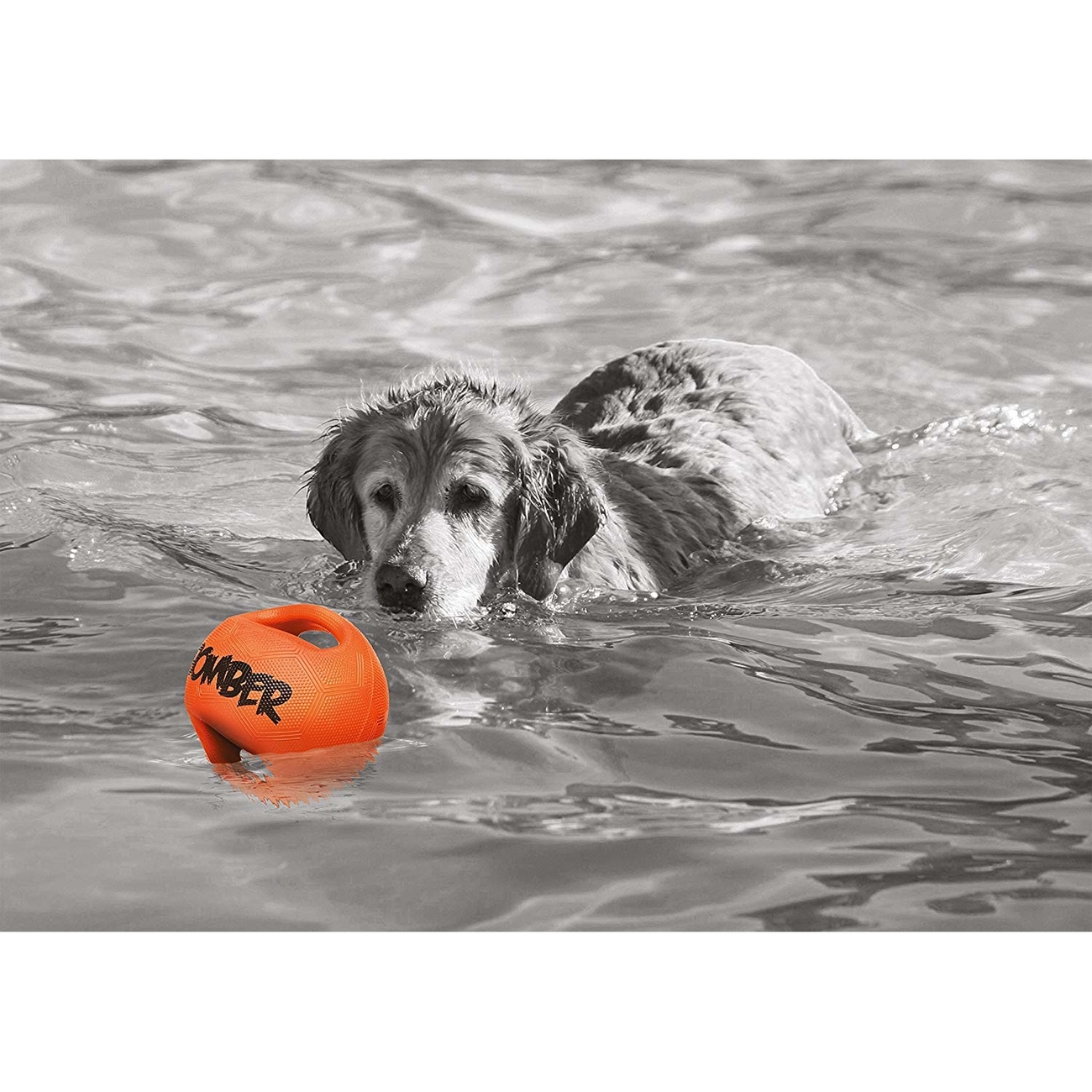 Bomber Hundespielzeug, Bild 7