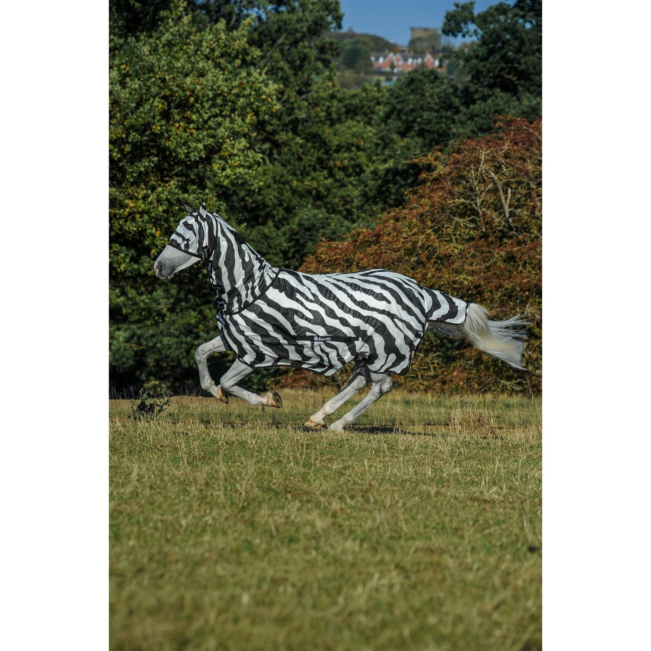 Bucas Fliegendecke Buzz Off Zebra, Bild 2
