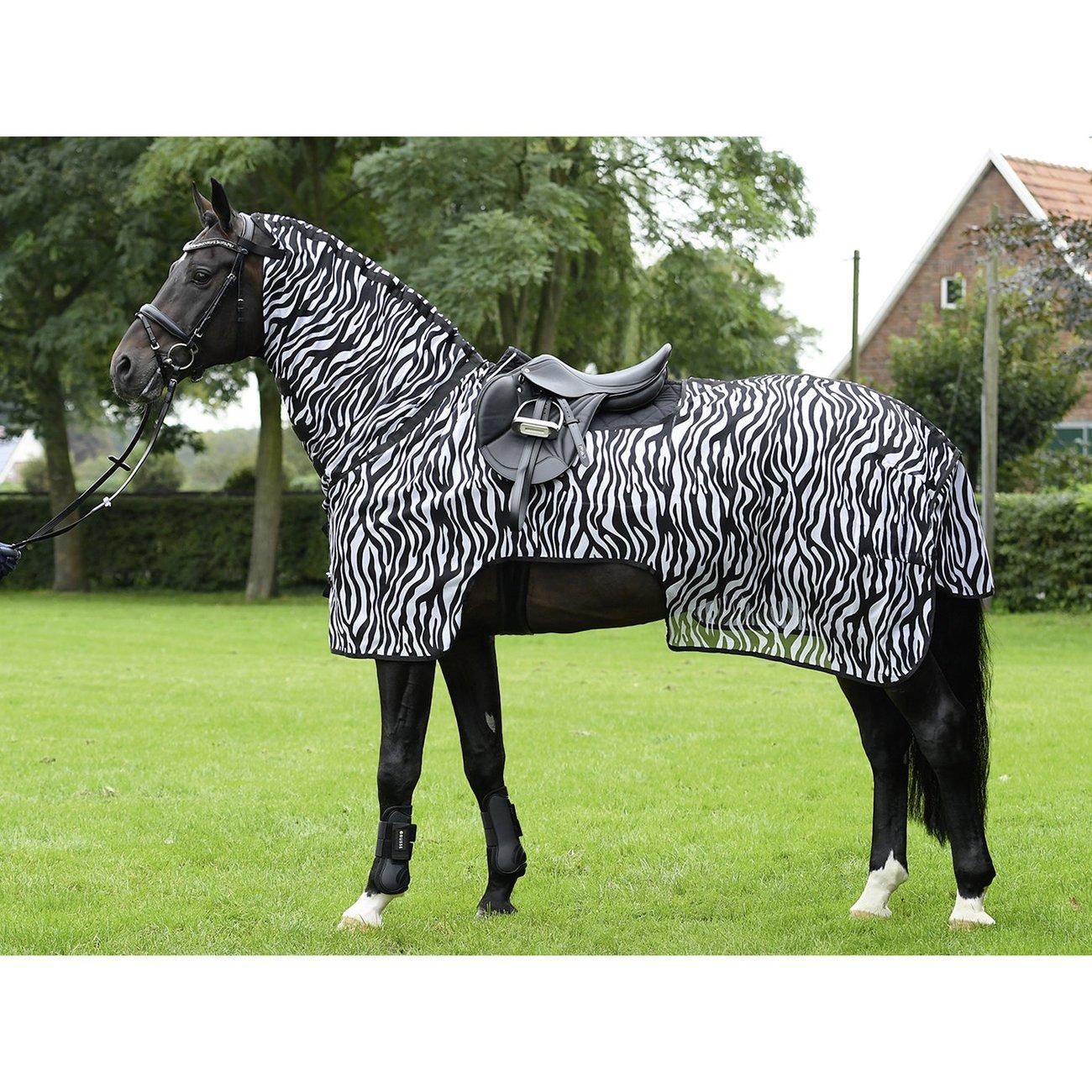 BUSSE Moskito Zebra II zum Ausreiten