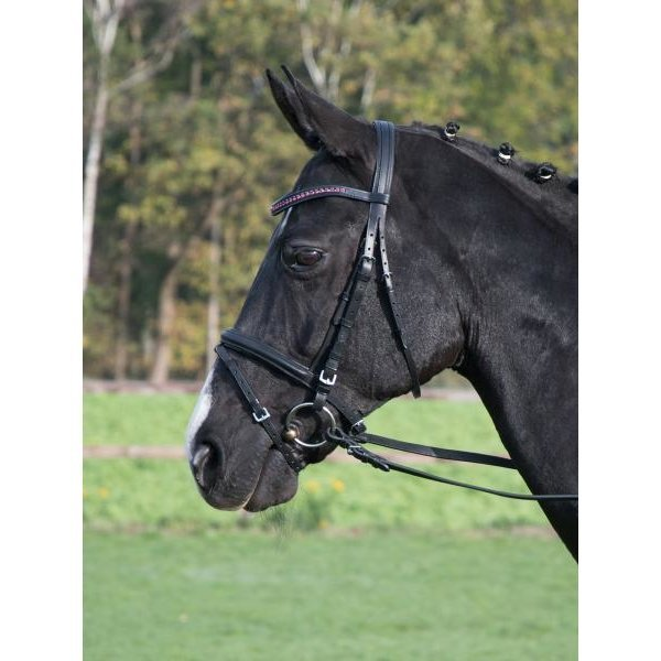 BUSSE Fashion Trense, Gr. Pony - schwarz/Kristall-fuchsia