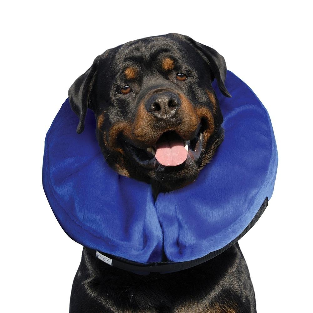 Buster aufblasbarer Hundekragen, Bild 2