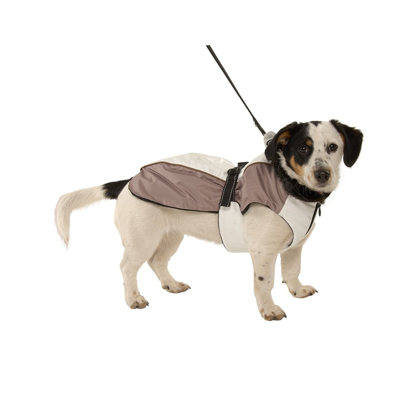 Buster Hundewintermantel, Bild 6