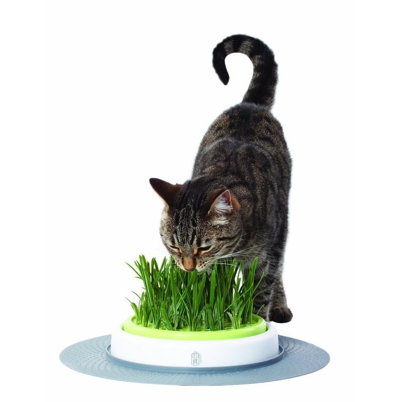 Catit Design Senses Gras-Garten-Set Katzengras, Bild 2