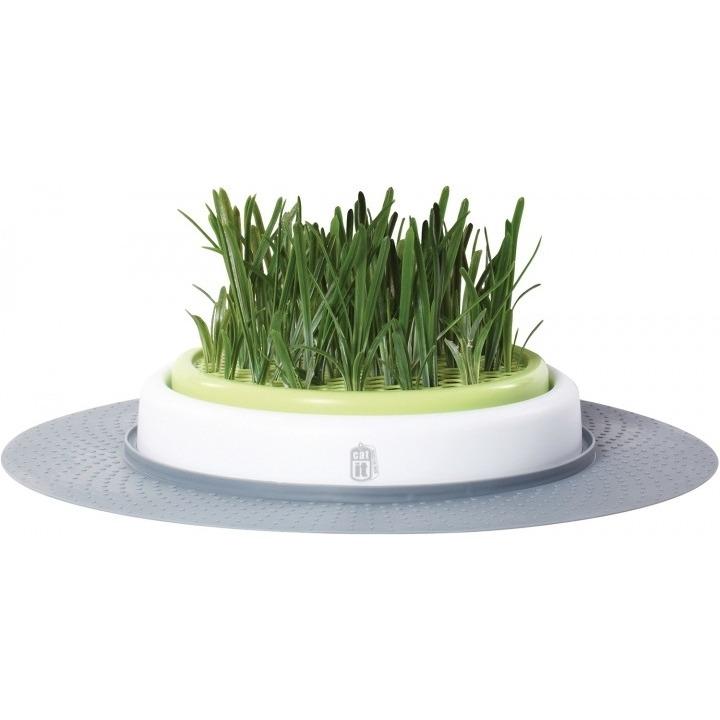 Catit Design Senses Gras-Garten-Set Katzengras