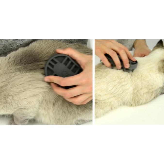 Catit Grooming Kit - Bürsten-Set für Katzen, Bild 6