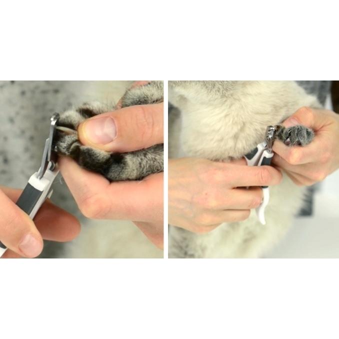 Catit Grooming Kit - Bürsten-Set für Katzen, Bild 7