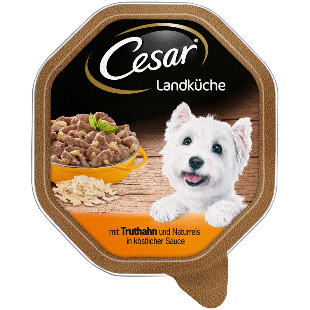 Mars Cesar Landküche Mini-Filets in Sauce Hundefutter, 14 x 150 mit Truthahn & Naturreis in Sauce