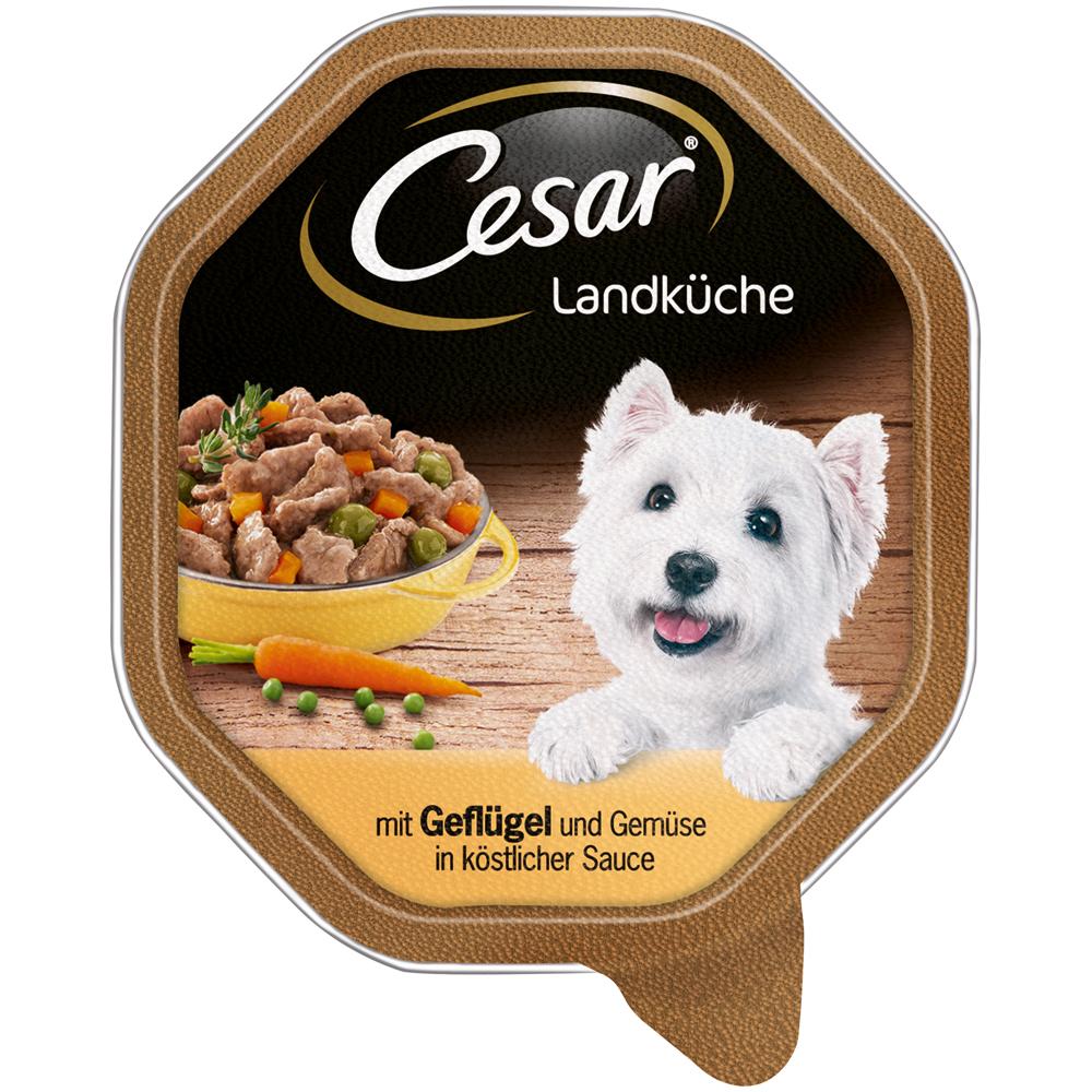 Mars Cesar Landküche Mini-Filets in Sauce Hundefutter, 14 x 150g mit Geflügel und Gemüse