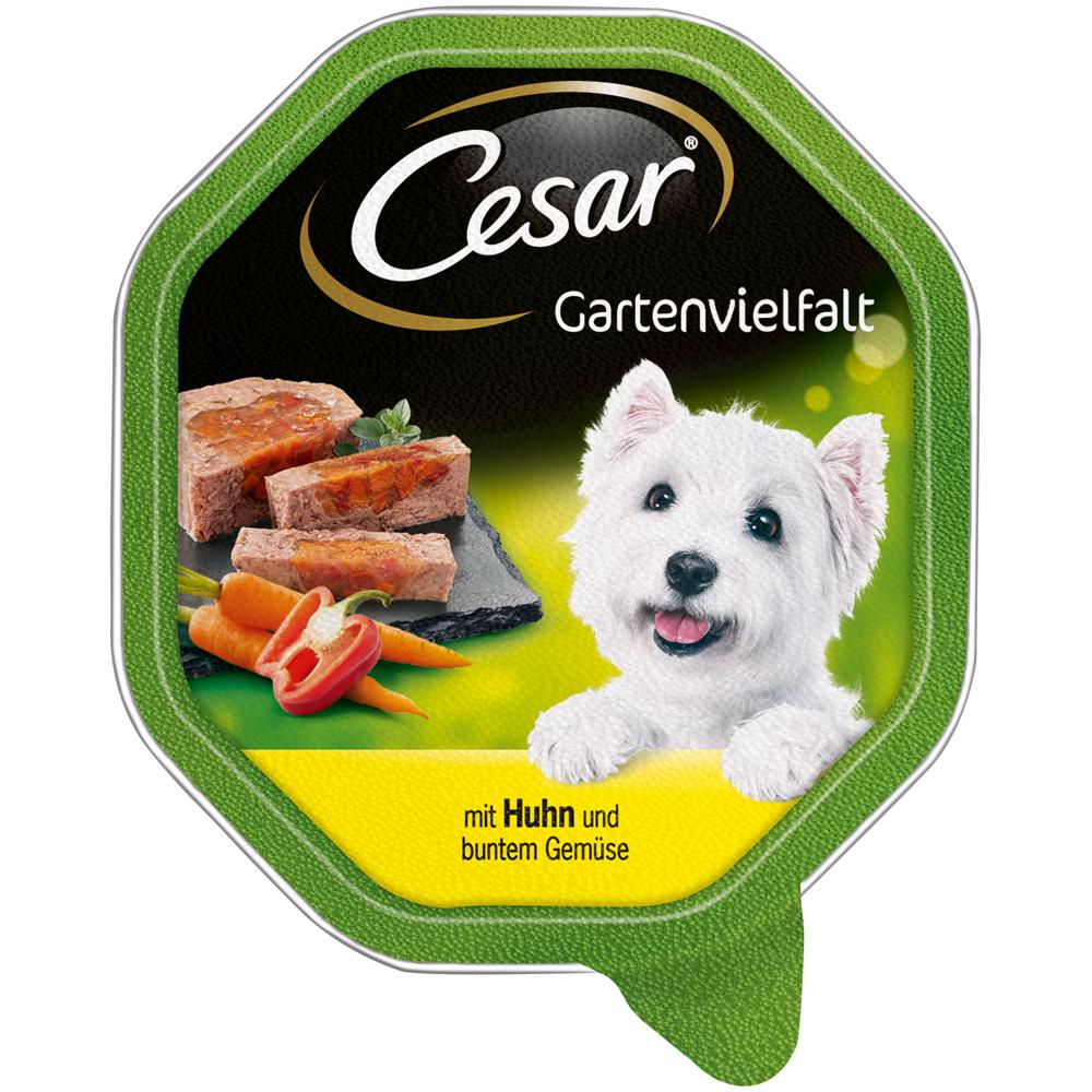 Mars Cesar Schälchen Gartenvielfalt Hundefutter, mit Huhn & buntem Gemüse 14x150g