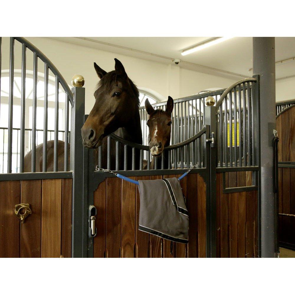 Covalliero Deckenhalter für Pferdedecken mit Kette, Bild 2