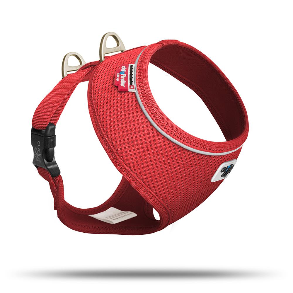 Curli Brustgeschirr Basic Air Mesh für kleine Hunde, Bild 5