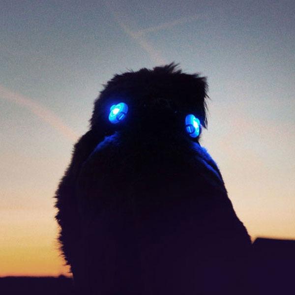 Curli luumi LED Sicherheitslicht, Bild 5
