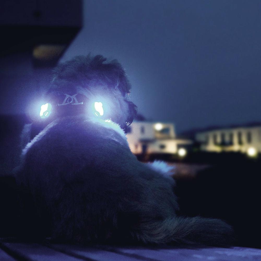 Curli luumi LED Sicherheitslicht, Bild 6